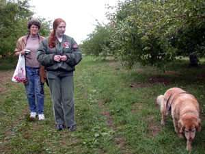 Mom, Abby, and Billy the golden retriever - in an apple orchard