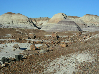 Petrified Forest, Painted Desert, and other sites along old Route 66